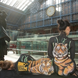 Tiger body painting by Carolyn Roper at St Pancras